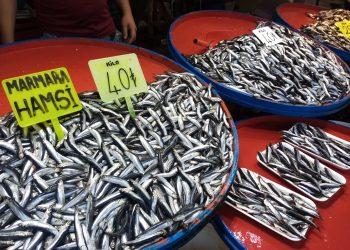 GÜNEY MARMARA'NIN BALIKÇILIK MERKEZİ BALIKESİR'İN BANDIRMA İLÇESİNDE BALIK FİYATLARI CEP YAKIYOR. HAMSİ'NİN KİLOSU KIRMIZI ET FİYATI İLE YARIŞIYOR. (ÖMER TURAN/BALIKESİR-İHA) Güney Marmara'nın balıkçılık merkezi Balıkesir'in Bandırma ilçesinde balık fiyatları cep yakıyor. Hamsinin kilosu ise 40 liraya dayandı.